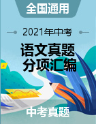 2021年中考语文真题分项汇编(全国通用)