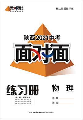 2021陕西物理中考面对面精练本