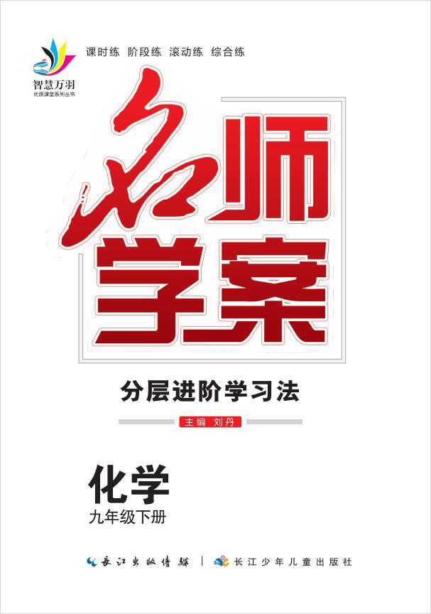 2020-2021学年九年级下册初三化学【名师学案】(人教版)课件PPT