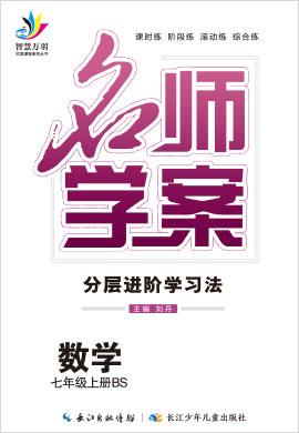 2020-2021学年七年级上册初一数学【名师学案】(北师版)