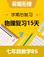 【学期总复习】2021暑假七年级下册初一数学复习15天(初一升初二衔接)(北师大版)
