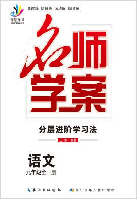 2020-2021学年九年级全一册初三语文【名师学案】(部编版)云南
