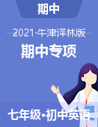 2020-2021学年七年级英语下学期期中专项复习(牛津译林版)
