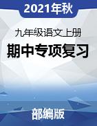 2021-2022学年九年级语文上册期中专项复习(部编版)