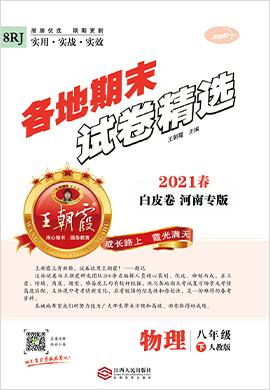 2021春八年级下册物理期末试卷精选【王朝霞系列丛书】河南专版(人教版)