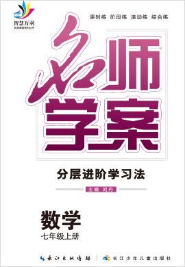 2020-2021学年七年级上册初一数学【名师学案】(人教版)玉林