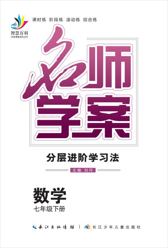 2020-2021学年七年级下册初一数学【名师学案】人教版(书稿)