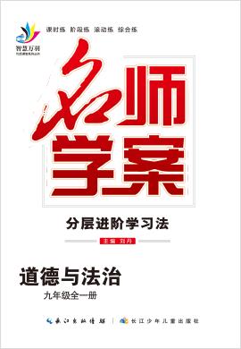 2020-2021学年九年级全一册初三道德与法治【名师学案】(部编版)课件PPT
