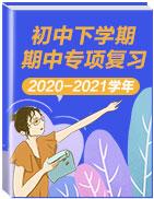 2020-2021学年初中下学期期中专项复习
