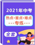 2021年中考【热点·重点·难点】专练