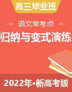 2022年高三毕业班语文常考点归纳与变式演练(新高考版)