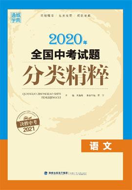2020年全国中考语文试题分类精粹配套PPT