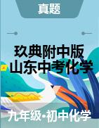 【玖典附中版】2020年山东省中考化学真题详解