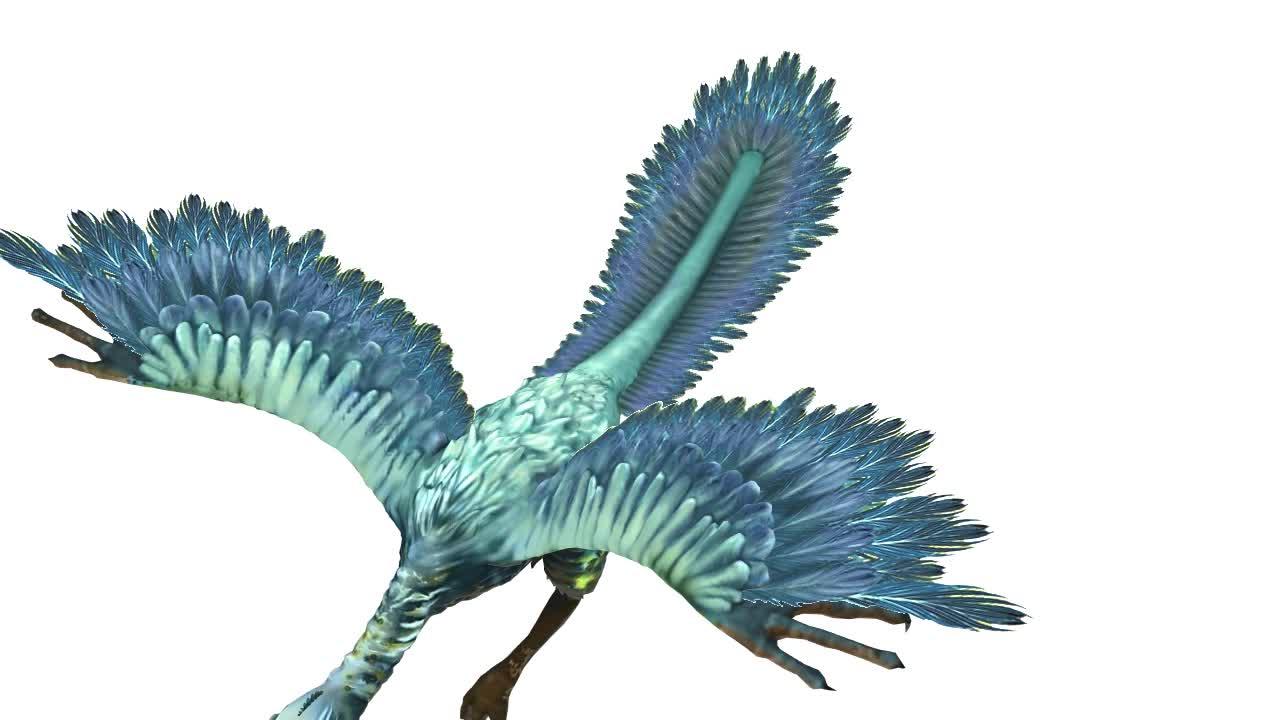 7.3.2 始祖鸟-【火花学院】人教版八年级生物下册 生物圈中生命的延续 第七单元 生物圈中生命的延续和发展 第三章 生物的进化 第二节 生物进化的历程 [来自e网通客户端]