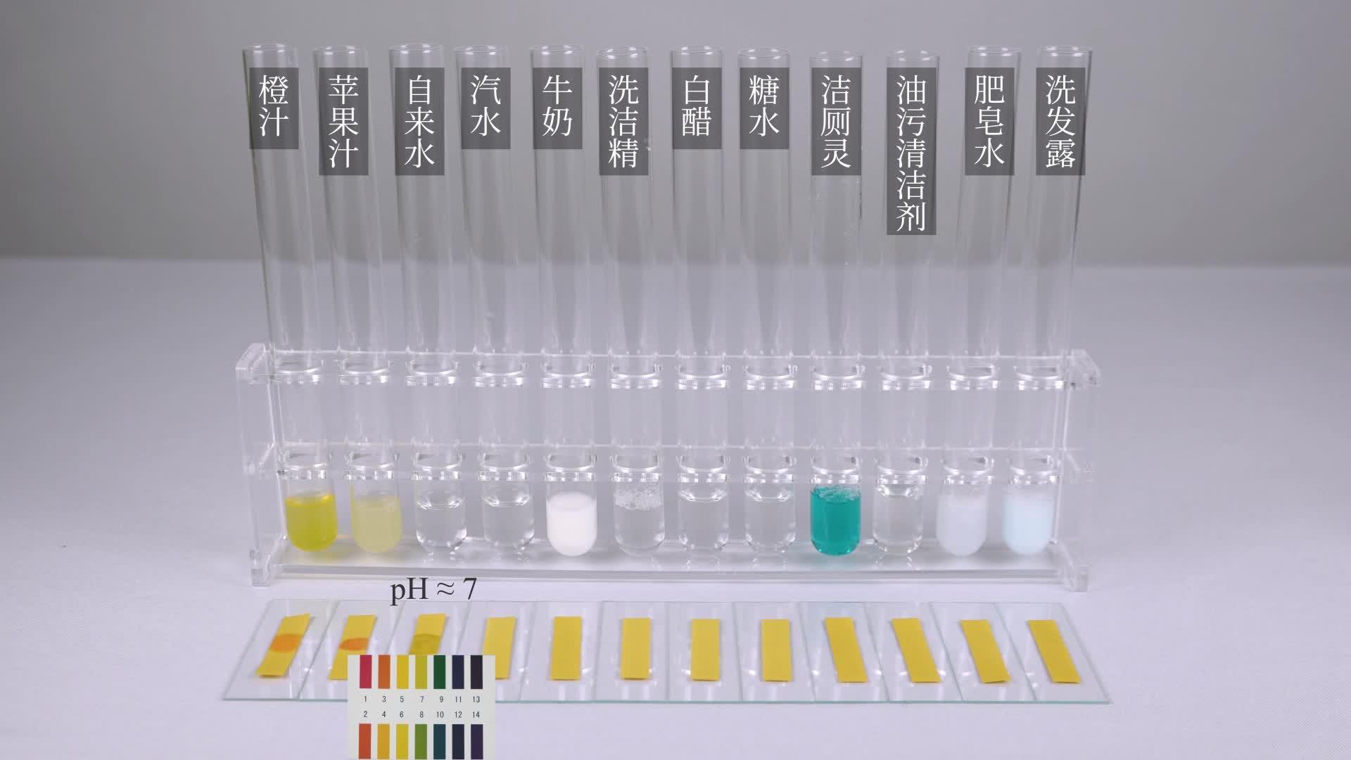 10.2 生活中一些物质的pH值-【火花学院】人教版九年级化学下册实验演示视频