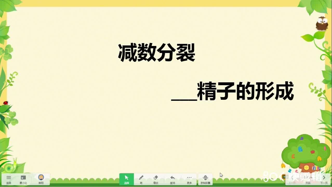 2.1减数分裂-精子的形成--甘肃省甘南藏族自治州合作第一中学人教版高中生物必修2微课