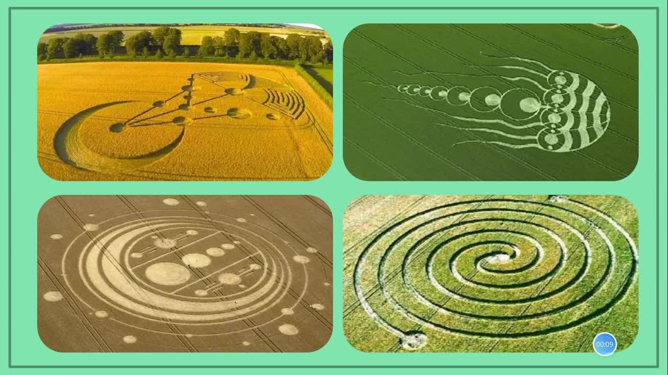《商品谷物农业》必修二—第三章—第二节以《种植业为主的农业地域类型》(第二课时)商品谷物农业①说清楚商品谷物农业的区位条件和特点;②对比季风水田农业和商品谷物农业的特点。