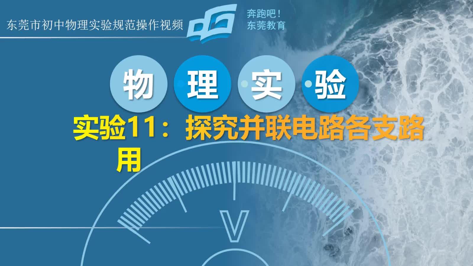 实验11:探究并联电路各支路用电器两端电压的关系 2021年广东省东莞市中考物理实验规范操作视频