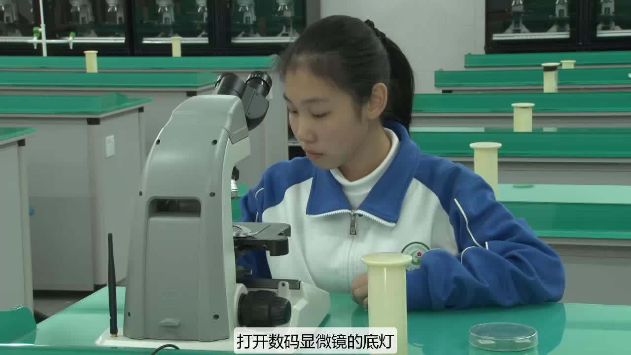 实验4 观察洋葱根尖细胞分裂永久切片--2021年广东省东莞市初中生物实验操作水平测试规范操作视频
