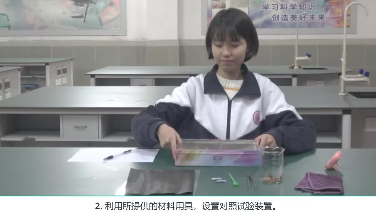 实验5 探究光照对黄粉虫的影响--2021年广东省东莞市初中生物实验操作水平测试规范操作视频