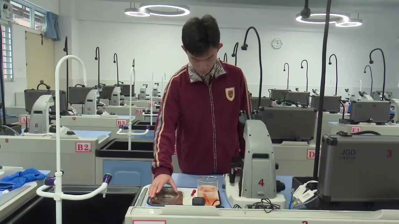 实验11 观察小鱼尾鳍内血液流动现象--2021年广东省东莞市初中生物实验操作水平测试规范操作视频
