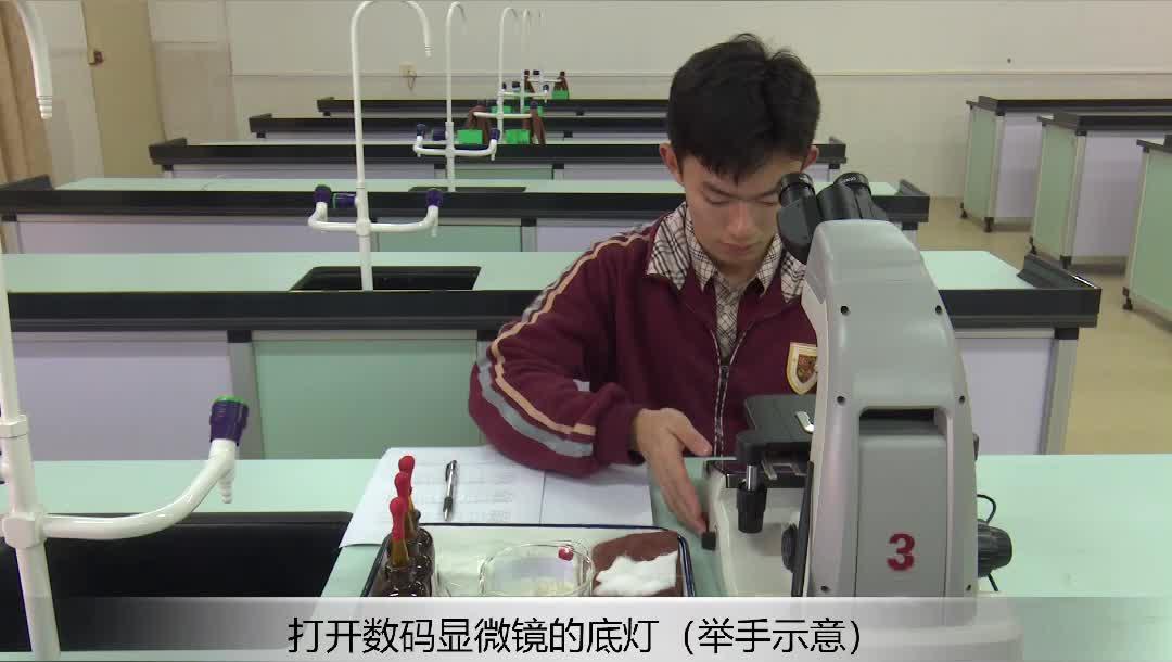 实验19 探究酒精对水蚤心率的影响--2021年广东省东莞市初中生物实验操作水平测试规范操作视频