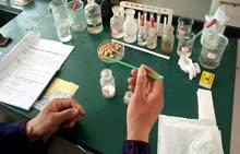 19-20理化生实验探究碳酸钠的某些性质及探究光对种子萌发是否有影响的实验视频