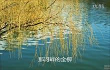 人教版高一语文 上册《再别康桥》配乐朗诵-视频素材